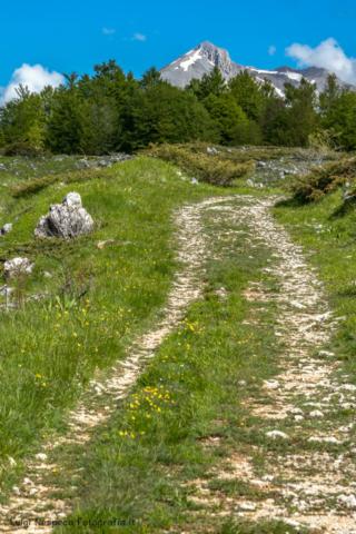 Gran Sasso - Voltigno: Monte Camicia