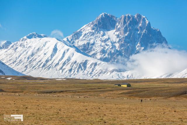 Pastorizia a Campo Imperatore - Prima neve - Parco nazionale del Gran Sasso