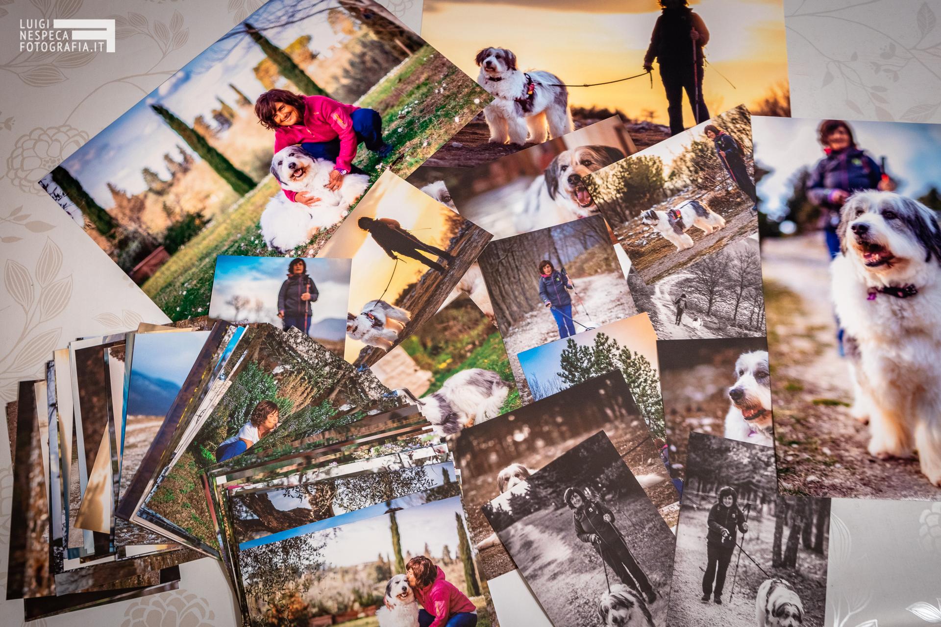 Stampa le tue fotografie per un ricordo indelebile - Pet Photography