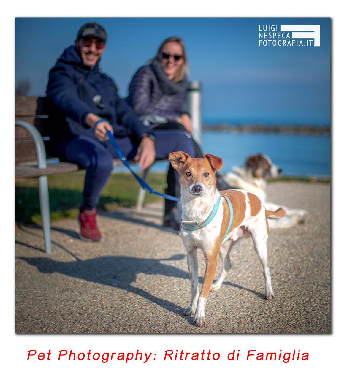 Pet Photography: un ritratto di Famiglia