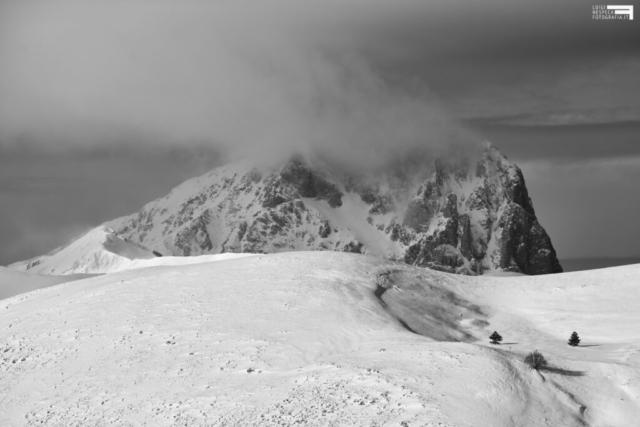 51 - Corno Grande e 3 alberi - Vista Rocca Calascio