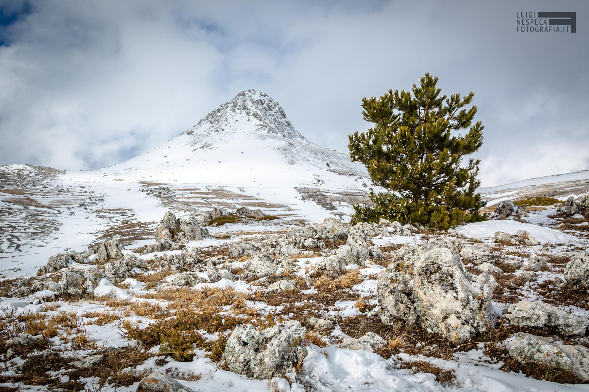 34 - Il Monte Bolza - Un anno al Gran Sasso