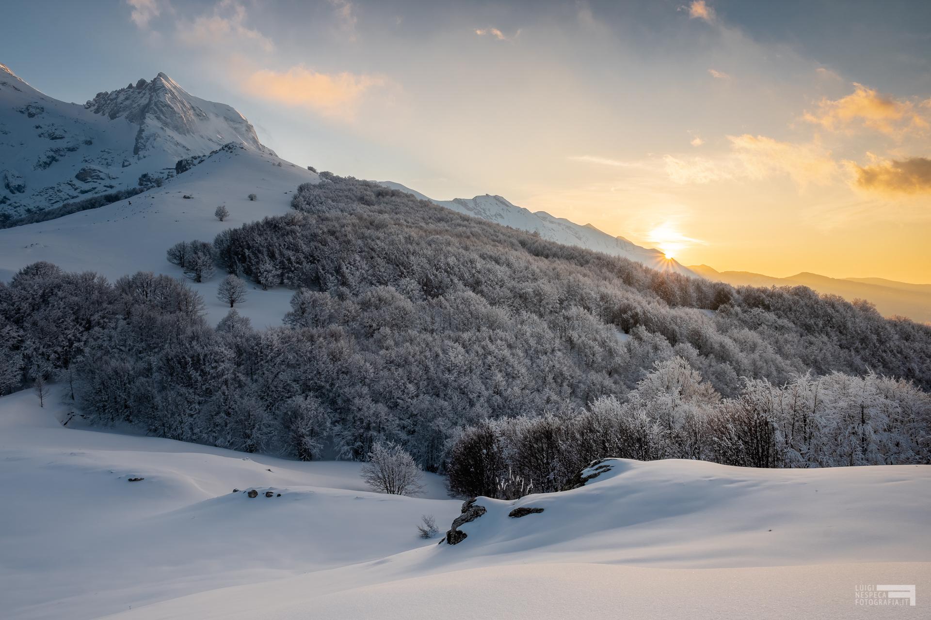 25 - Corno Piccolo e bosco dell'Aschiero innevati - Cima Alta - Marzo '21