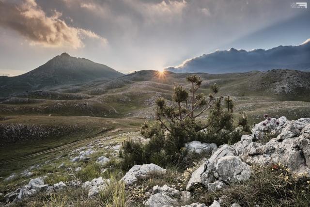 Giugno 2021 - Monte Bolza da Capo la Serra - GRAN SASSO