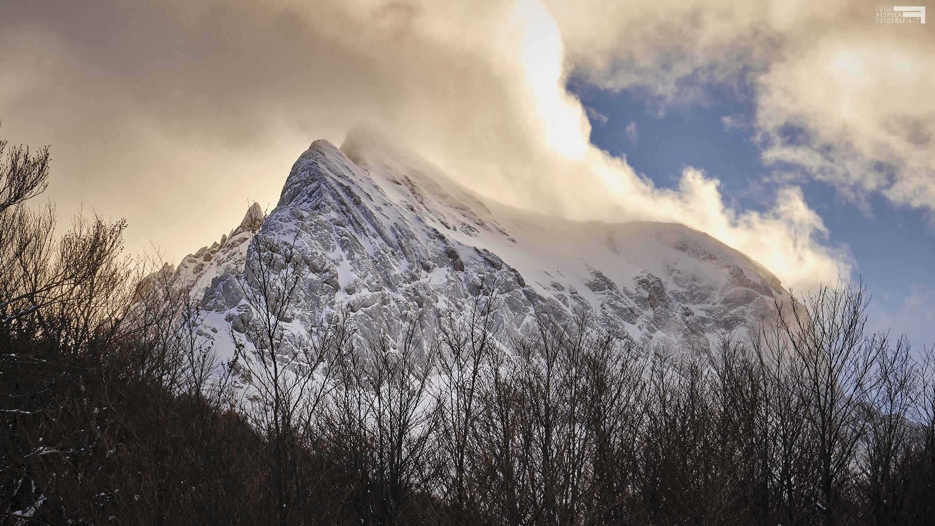 Gennaio 2021 - Corno Piccolo dal Bosco dell'Aschiero - Prati di Tivo - GRAN SASSO
