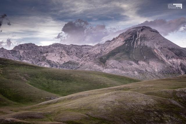 Giugno 2020 - Monte Camicia - GRAN SASSO